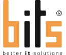 BITS Better IT Solutions GmbH-Software-Entwickler/Programmierer