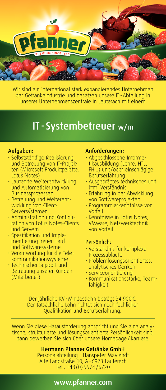 it-systembetreuer