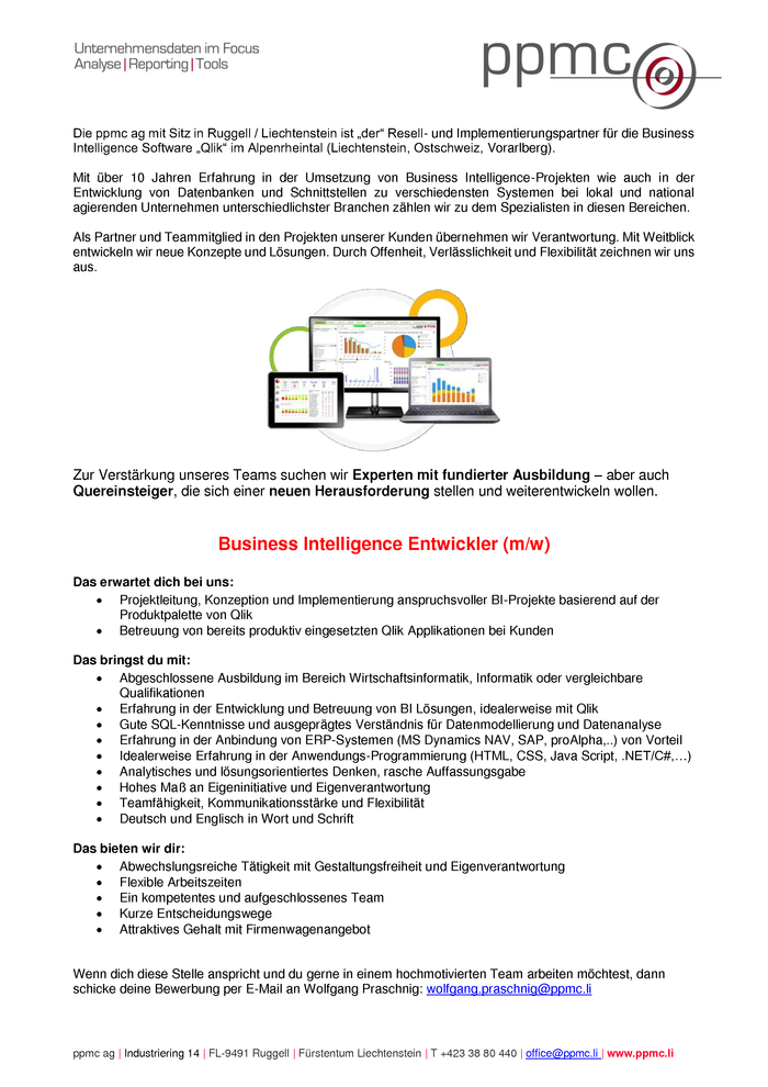 Business Intelligence Entwickler