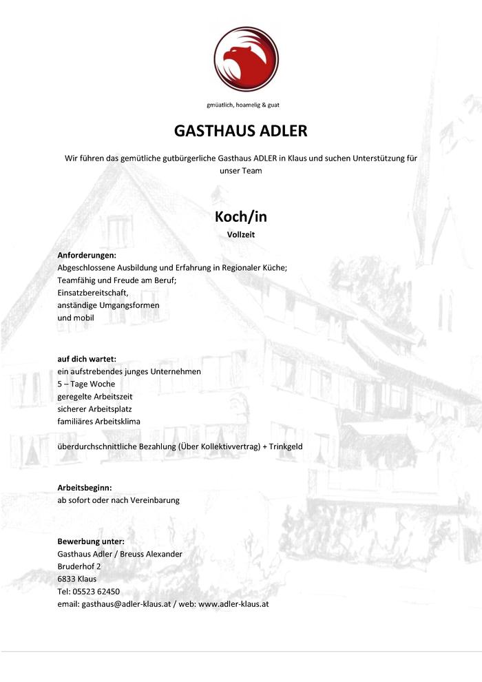 Groß Leitlinie Koch Lebenslauf Ideen - Dokumentationsvorlage ...