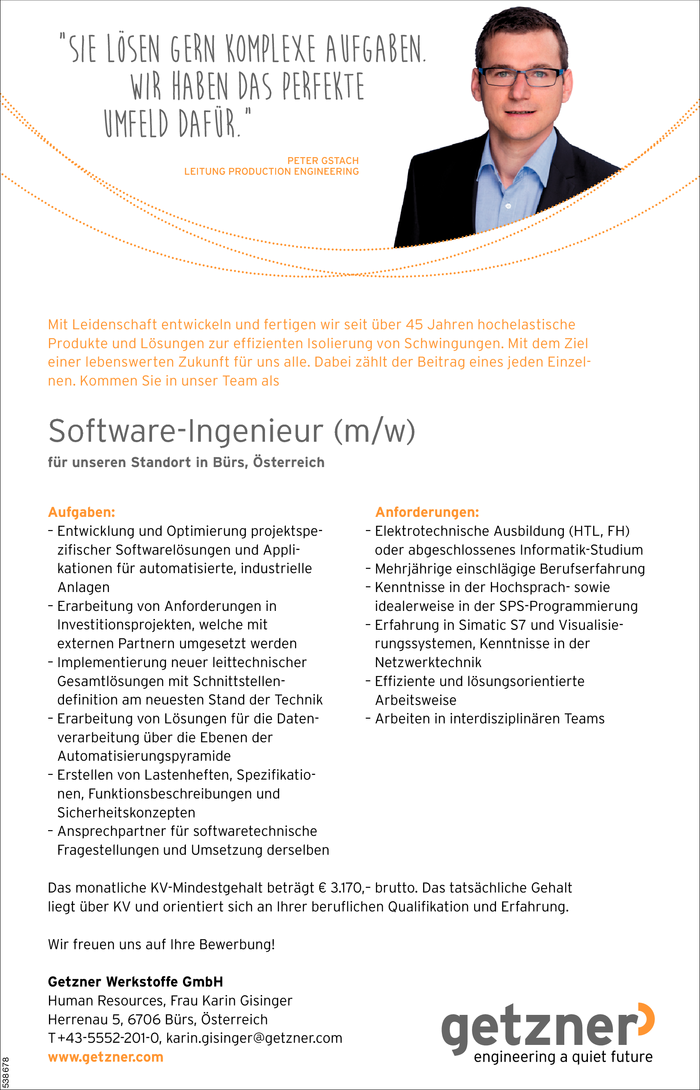 software-ingenieurin