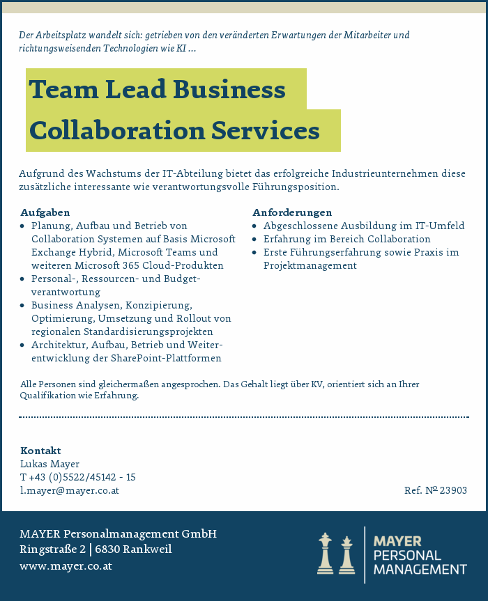 Team Lead Business Collaboration Services