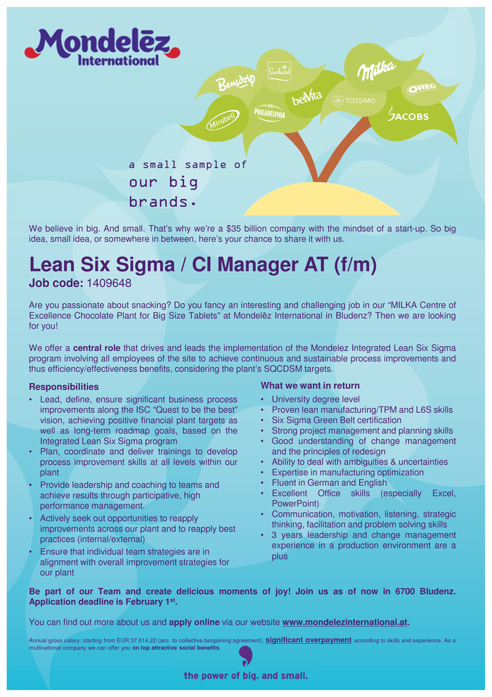 Lean Six Sigma / CI Manager AT (f/m)