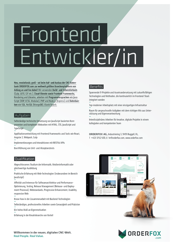 Frontend Entwickler/in