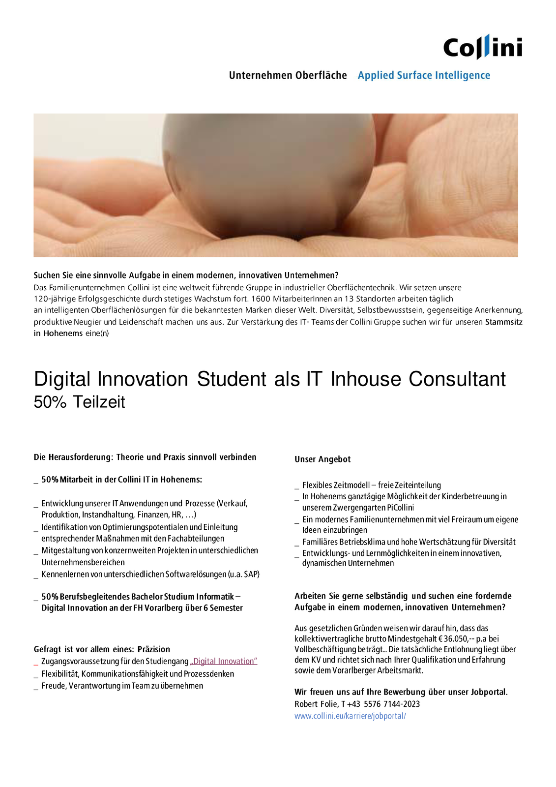 Digital Innovation Student als IT Inhouse Consultant (m/w)