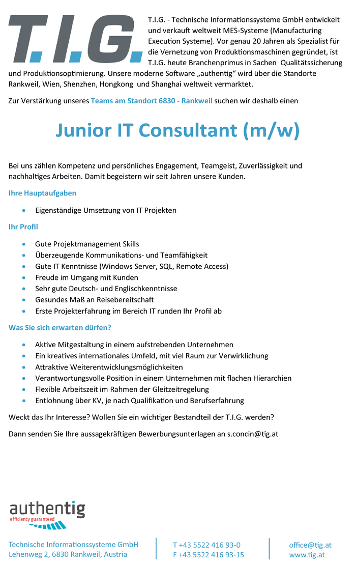 Junior IT Consultant